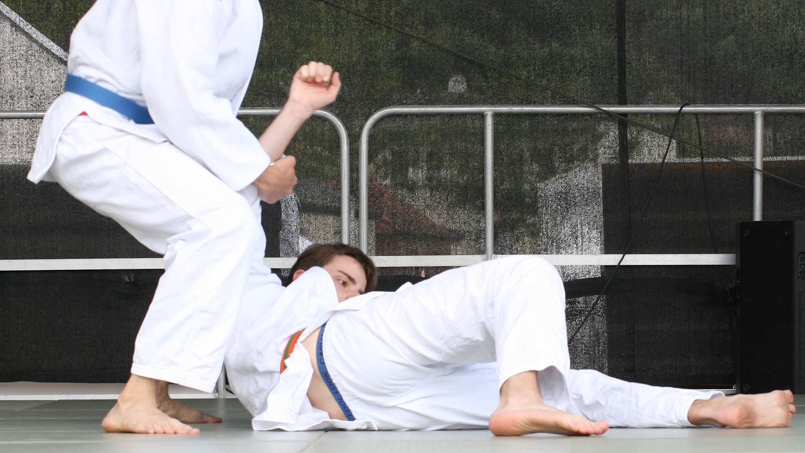 Judo_-3